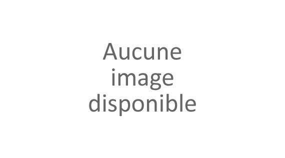 Pièces et accessoires pour trottinette DUALTRON X